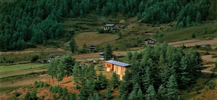 Foto 5 - Aman Resort Paro