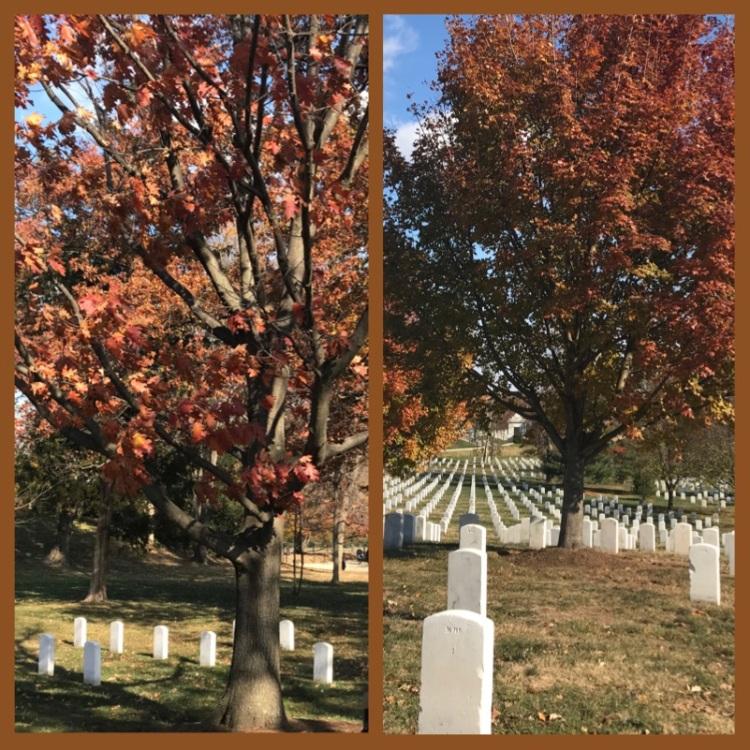 foto-3-cemiterio-de-arlington