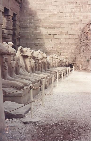 Foto 17 - Templo de Karnak avenida das Esfinges 3km até o templo de Karnak.Egito 31