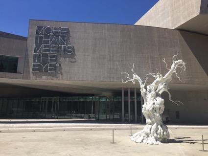 Foto 4 Museo MAXXI