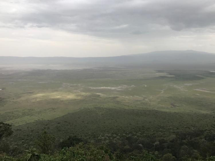 Foto 7 - Cratera de Ngorongoro