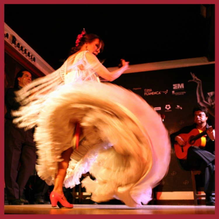 Foto 18 - Dança Flamenca