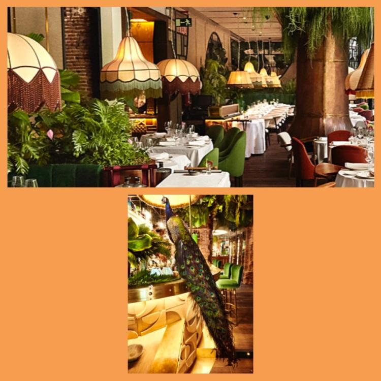 Foto 31 - Restaurante Amazonico