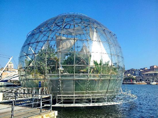 Foto 6 - Biosfera -Gênova-2012