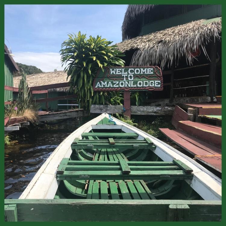 Foto 29 - Hotel Amazonlodge