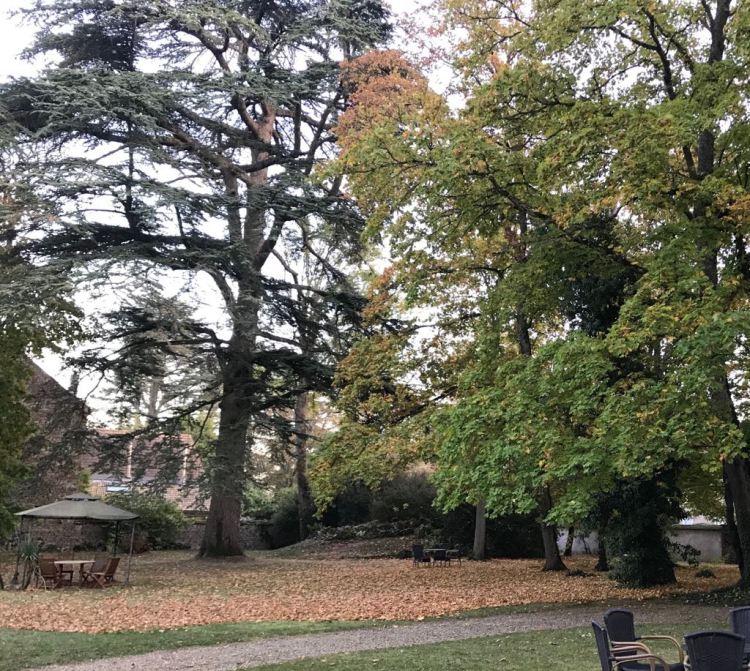 Foto 1 - Outono na Borgogne