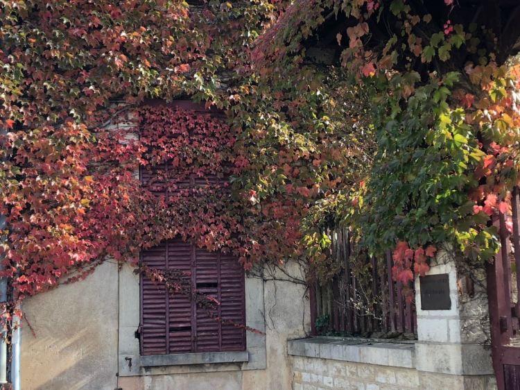 Foto 5 - Janela de casa em PolignyJPG